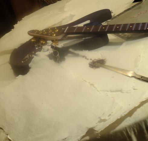 The-Blue-Guitar__JHS